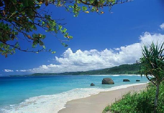 セブ島の天気予報と週間天気予報